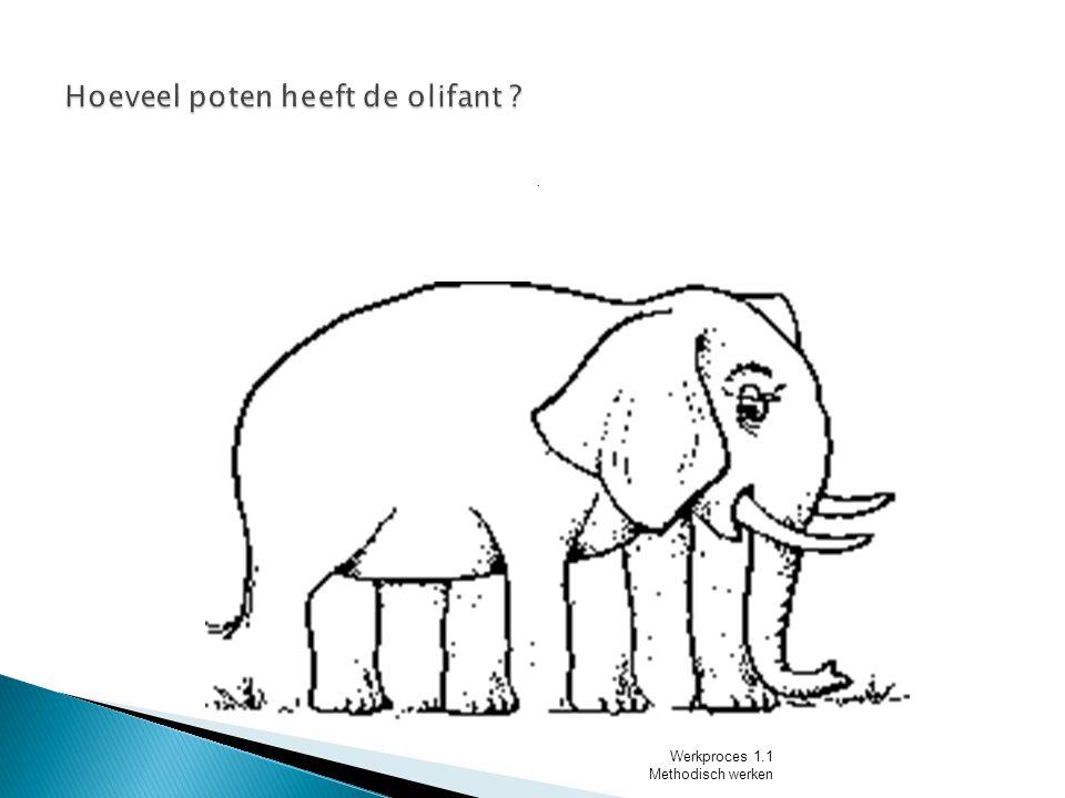 Hoeveel poten heeft de olifant