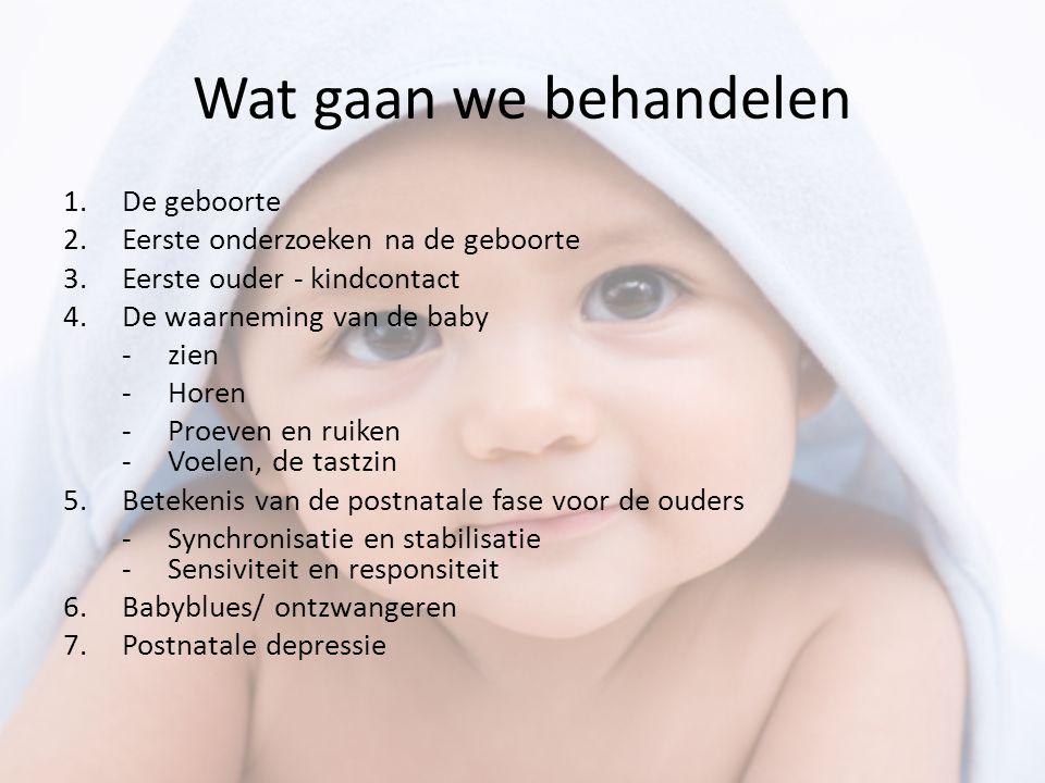 Wat gaan we behandelen De geboorte Eerste onderzoeken na de geboorte