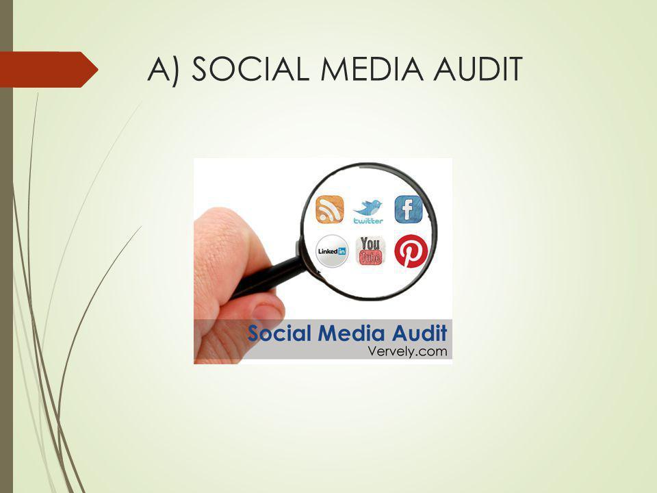 A) SOCIAL MEDIA AUDIT
