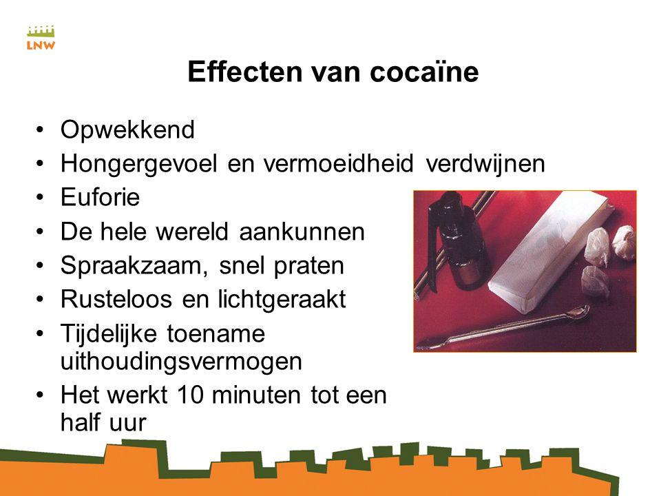 Effecten van cocaïne Opwekkend Hongergevoel en vermoeidheid verdwijnen
