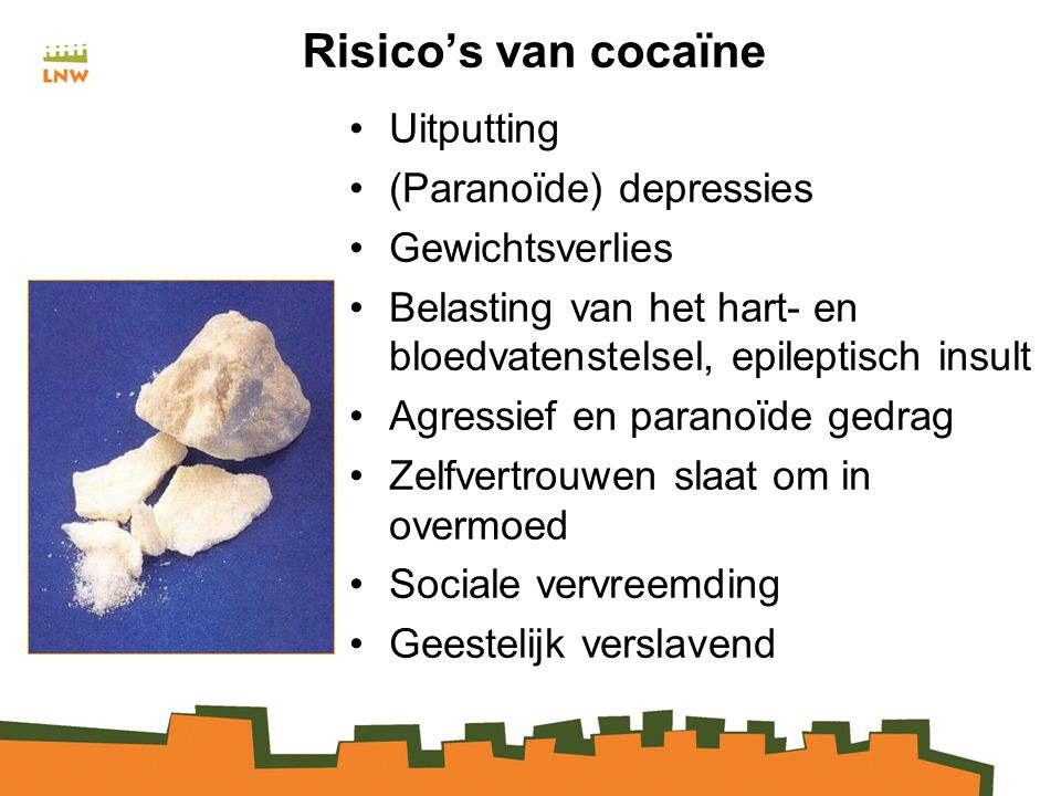 Risico's van cocaïne Uitputting (Paranoïde) depressies Gewichtsverlies