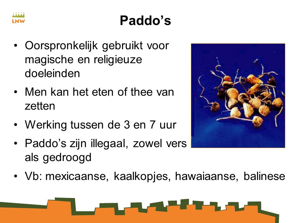 Paddo's Oorspronkelijk gebruikt voor magische en religieuze doeleinden