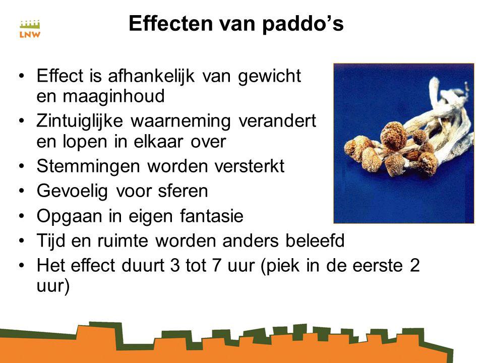 Effecten van paddo's Effect is afhankelijk van gewicht en maaginhoud
