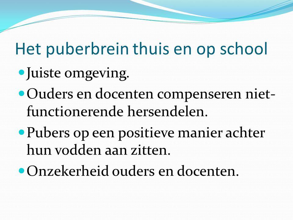 Het puberbrein thuis en op school