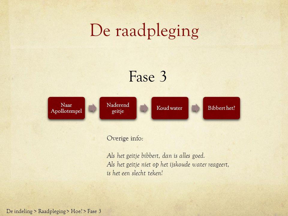 De raadpleging Fase 3 Overige info: