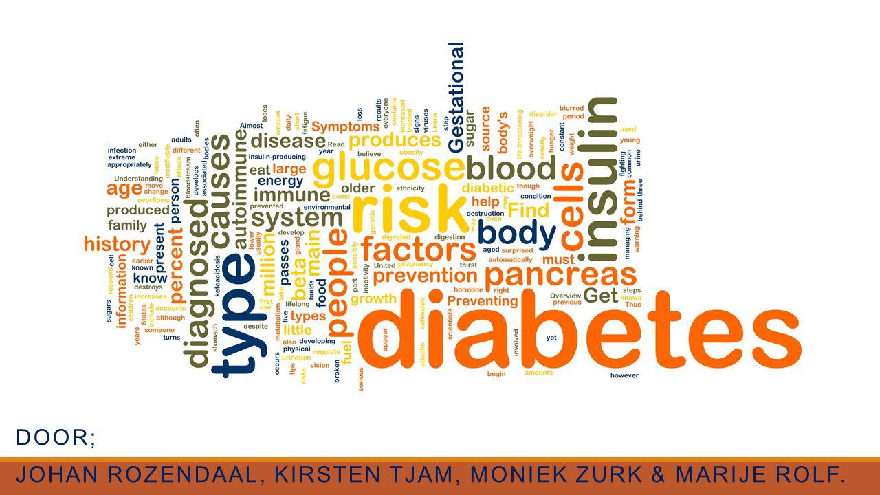 Door; Johan Rozendaal, Kirsten Tjam, Moniek Zurk & Marije Rolf.