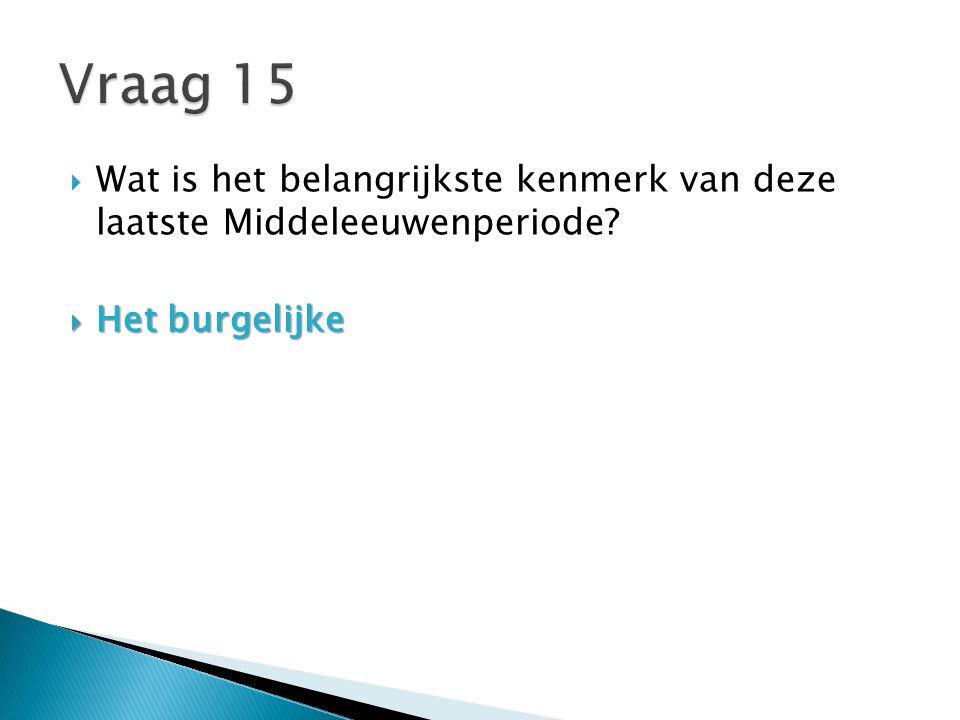 Vraag 15 Wat is het belangrijkste kenmerk van deze laatste Middeleeuwenperiode Het burgelijke