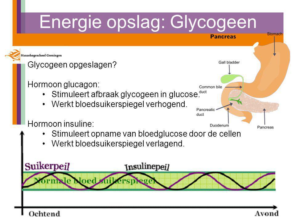 Energie opslag: Glycogeen