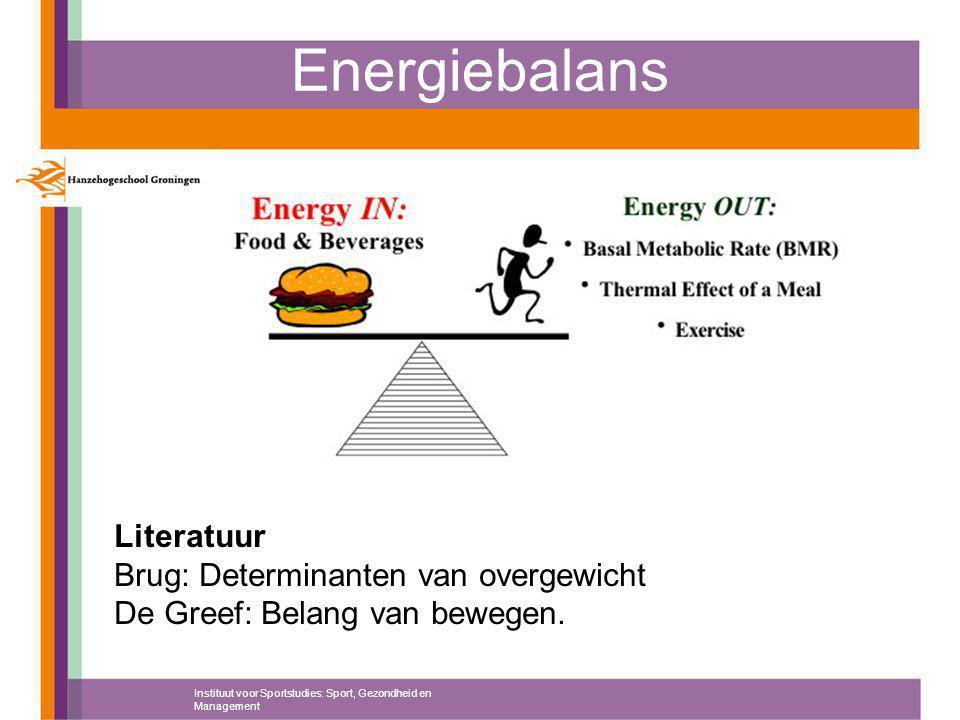 Energiebalans Literatuur Brug: Determinanten van overgewicht