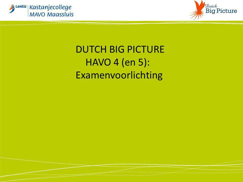 DUTCH BIG PICTURE HAVO 4 (en 5):