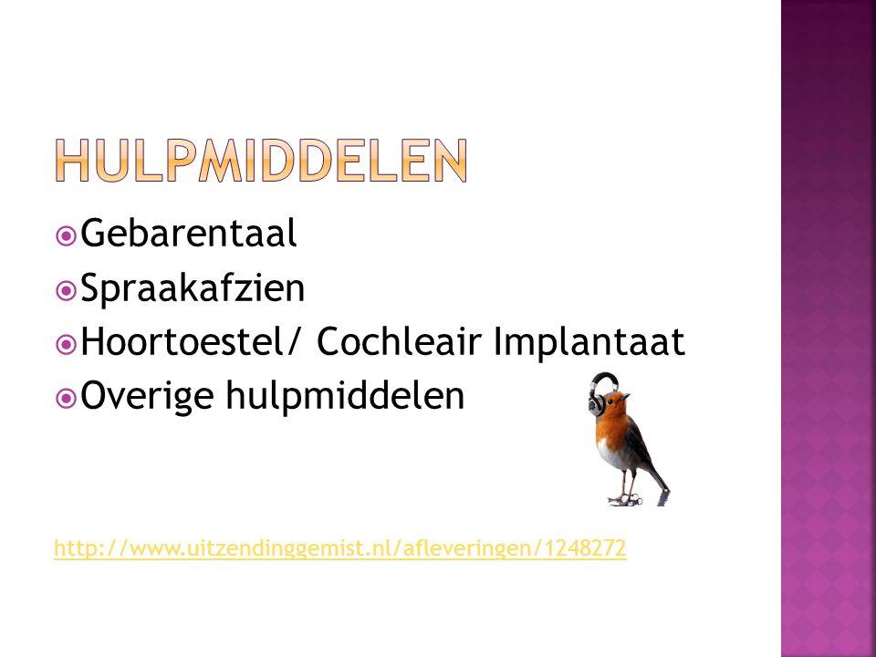 Hulpmiddelen Gebarentaal Spraakafzien