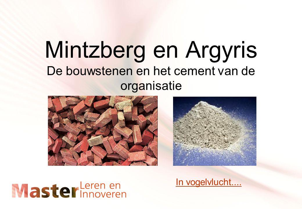 Mintzberg en Argyris De bouwstenen en het cement van de organisatie