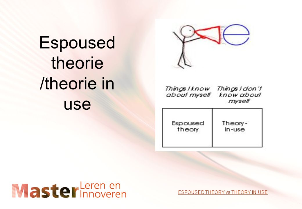 Espoused theorie /theorie in use