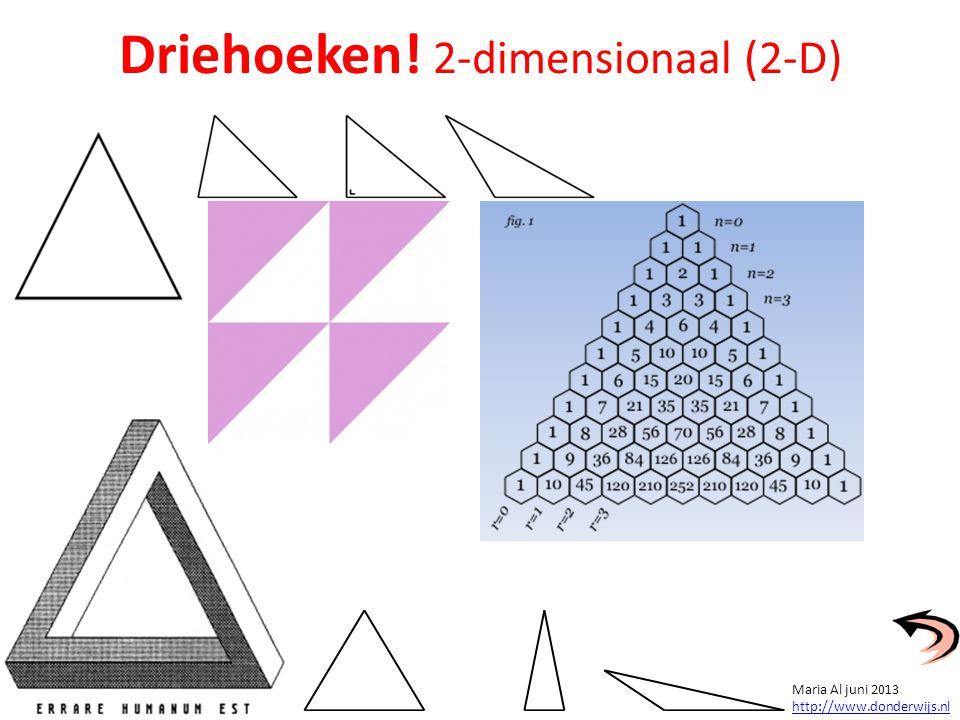 Driehoeken! 2-dimensionaal (2-D)