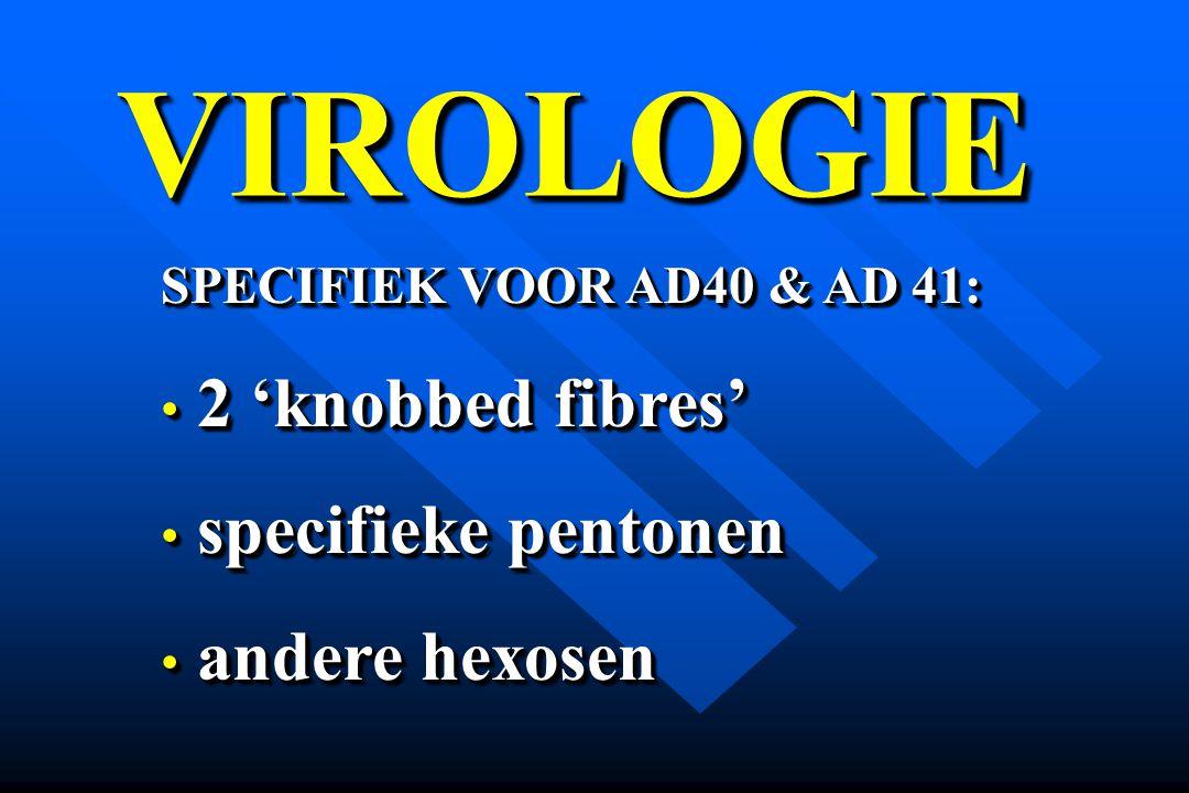 VIROLOGIE 2 'knobbed fibres' specifieke pentonen andere hexosen