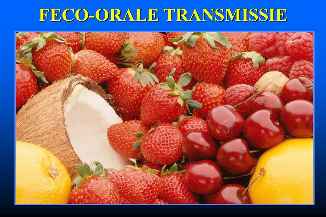 FECO-ORALE TRANSMISSIE