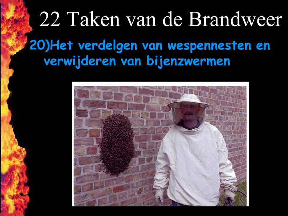 22 Taken van de Brandweer 20)Het verdelgen van wespennesten en verwijderen van bijenzwermen