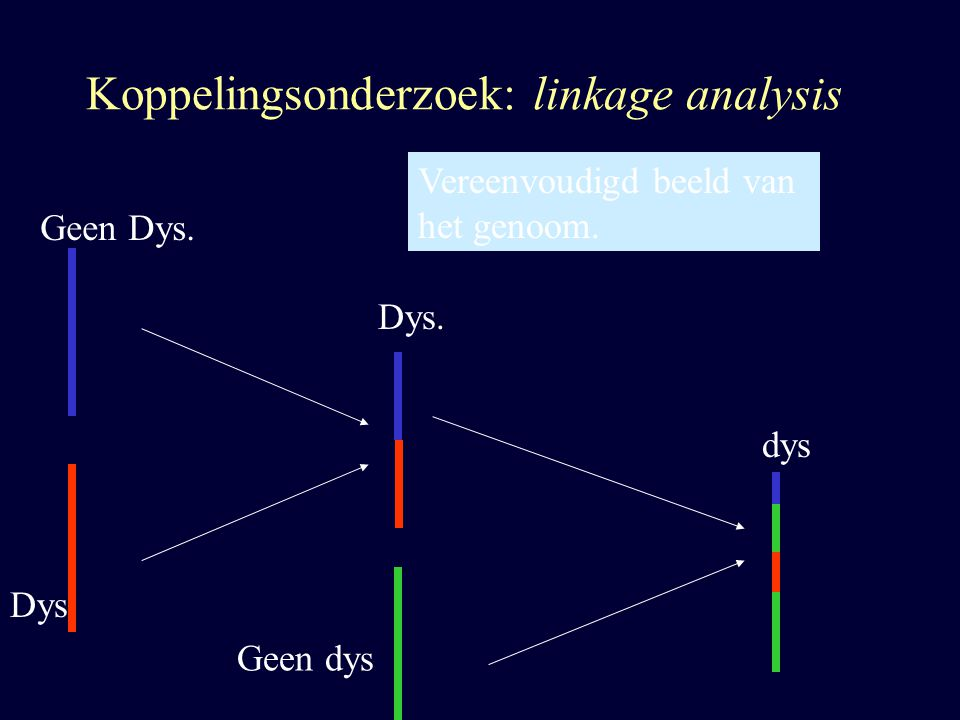 Koppelingsonderzoek: linkage analysis