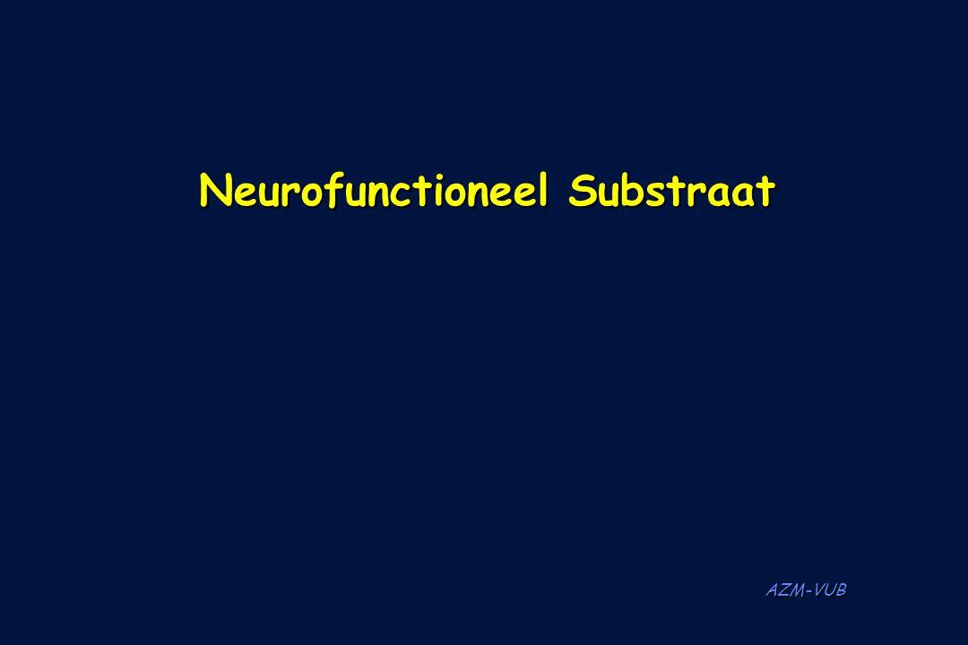 Neurofunctioneel Substraat