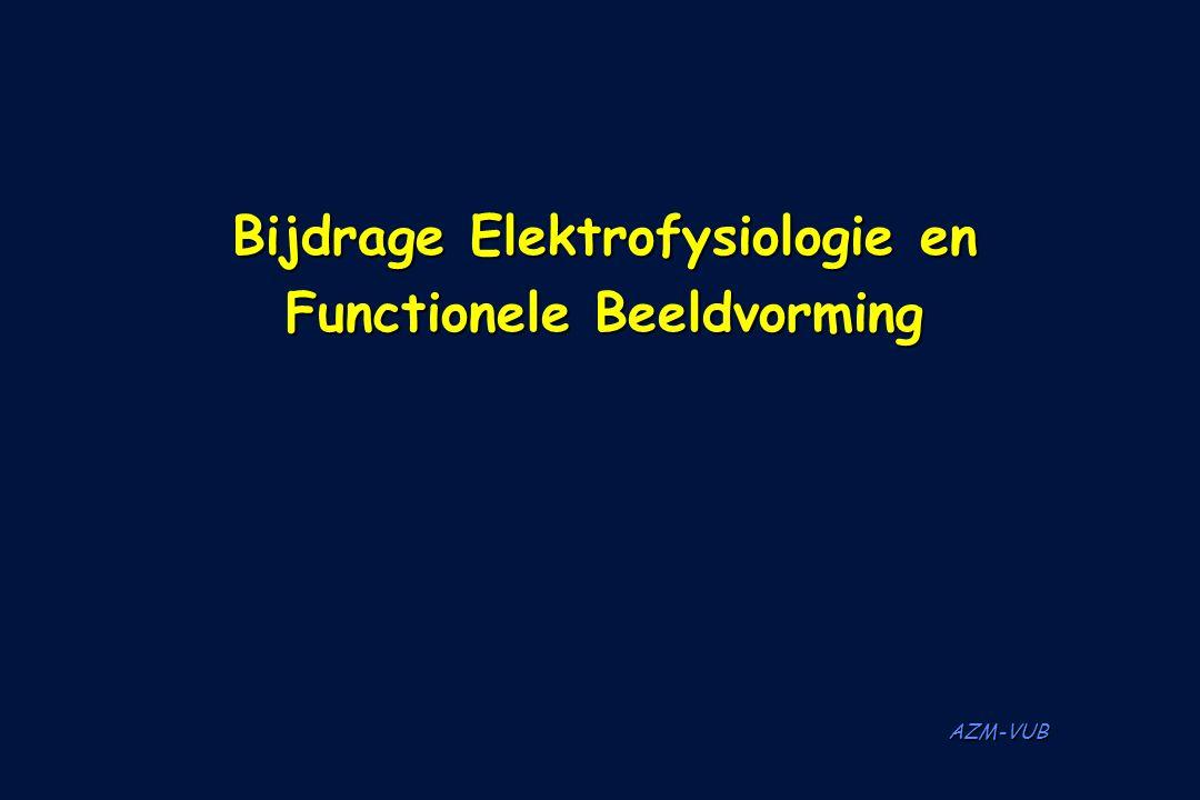 Bijdrage Elektrofysiologie en Functionele Beeldvorming