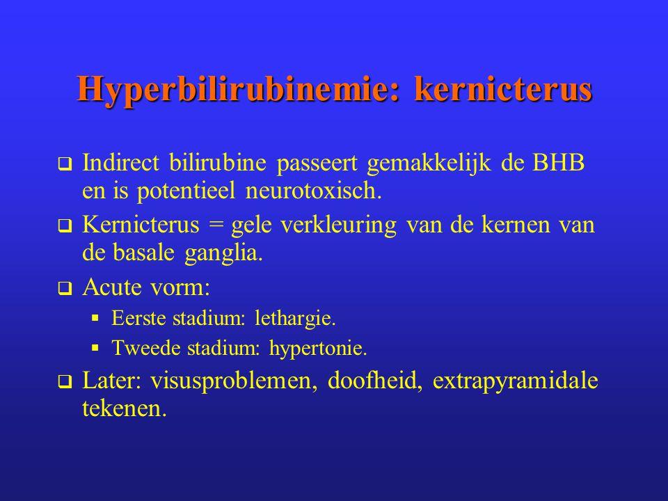 Hyperbilirubinemie: kernicterus