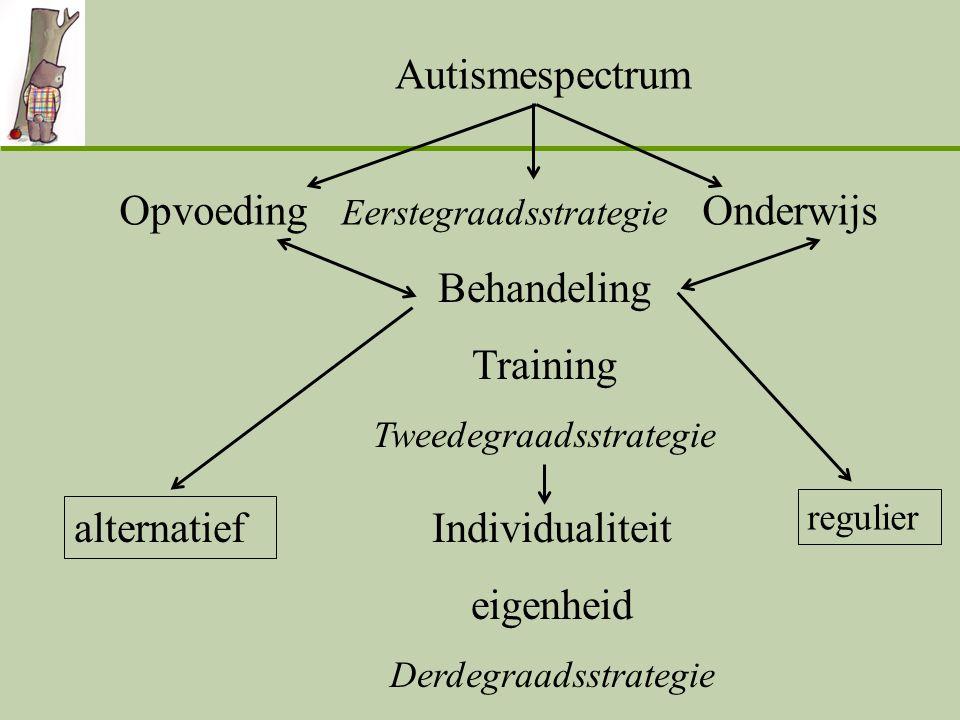 Opvoeding Eerstegraadsstrategie Onderwijs