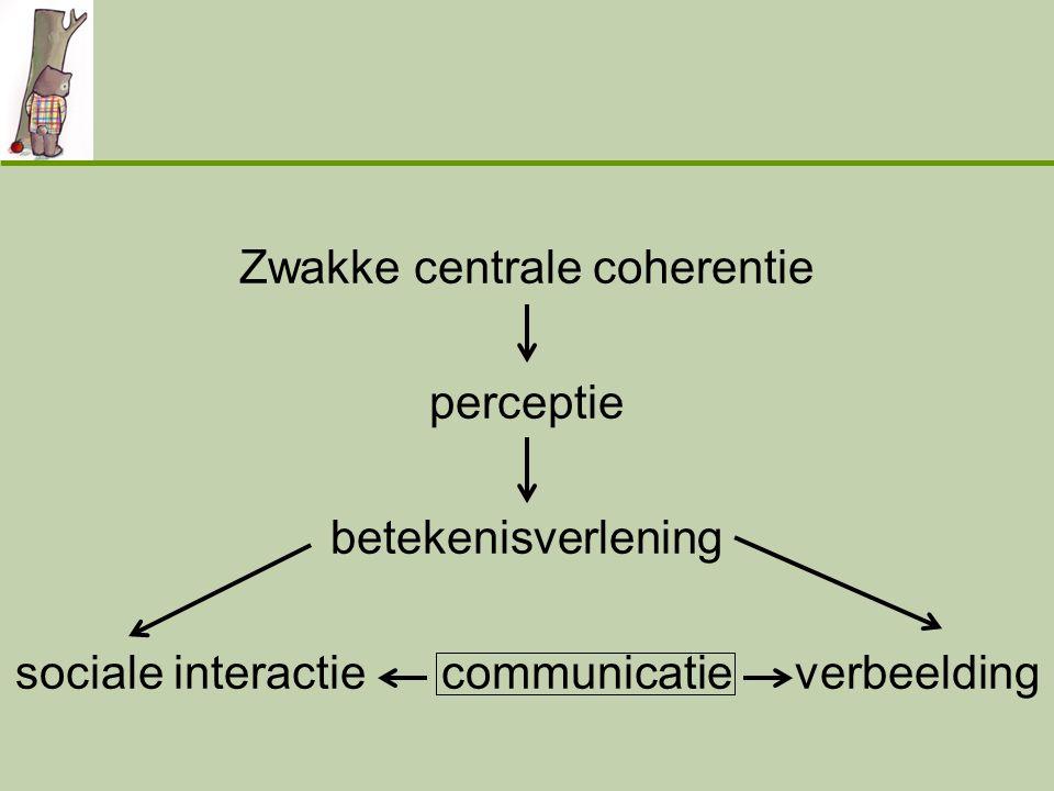 Zwakke centrale coherentie perceptie betekenisverlening