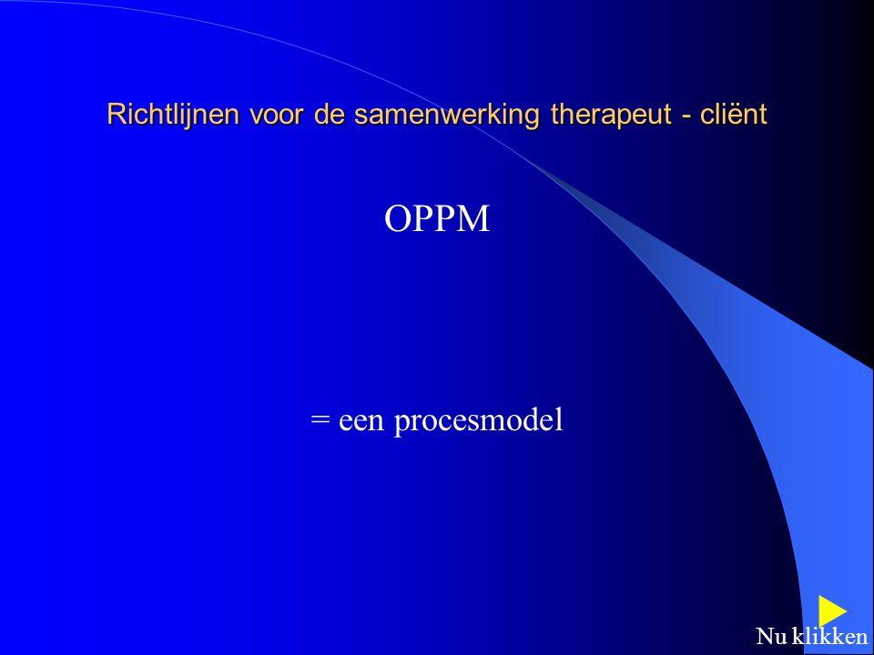 Richtlijnen voor de samenwerking therapeut - cliënt