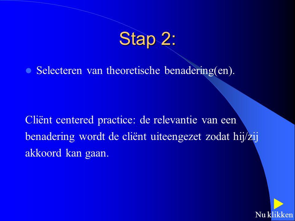 Stap 2:  Selecteren van theoretische benadering(en).