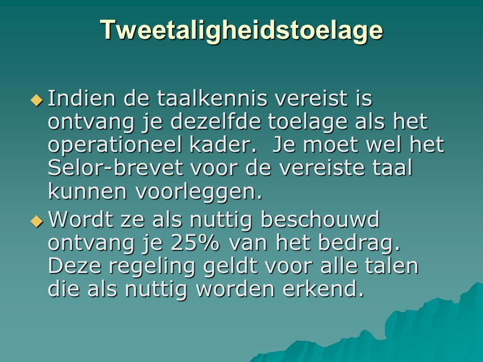 Tweetaligheidstoelage