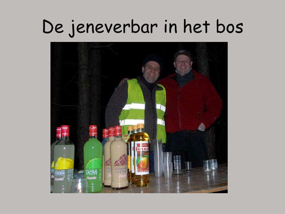 De jeneverbar in het bos
