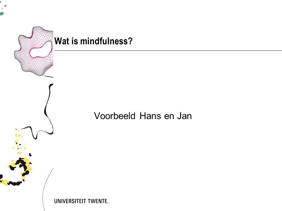 Wat is mindfulness Voorbeeld Hans en Jan