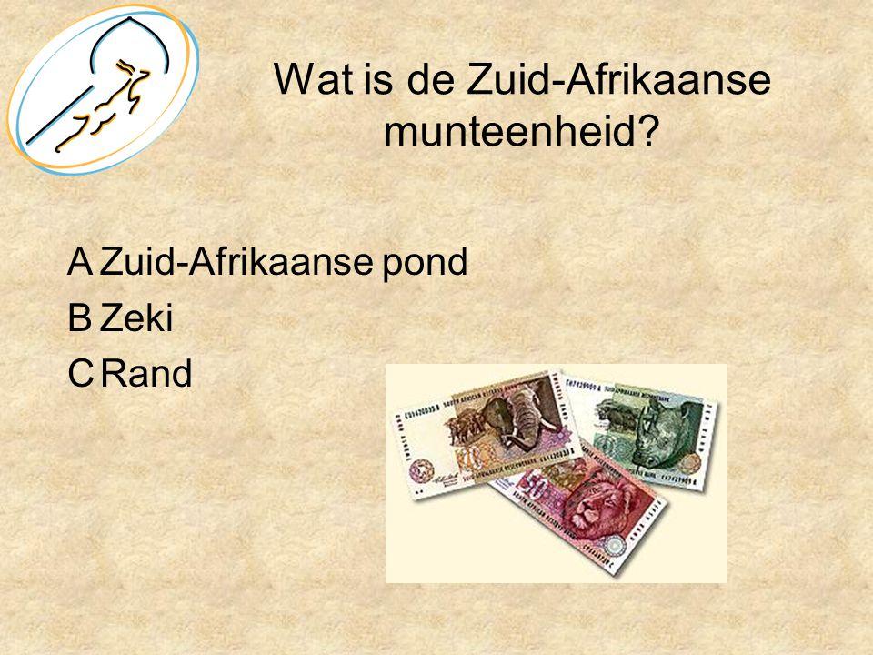 Wat is de Zuid-Afrikaanse munteenheid