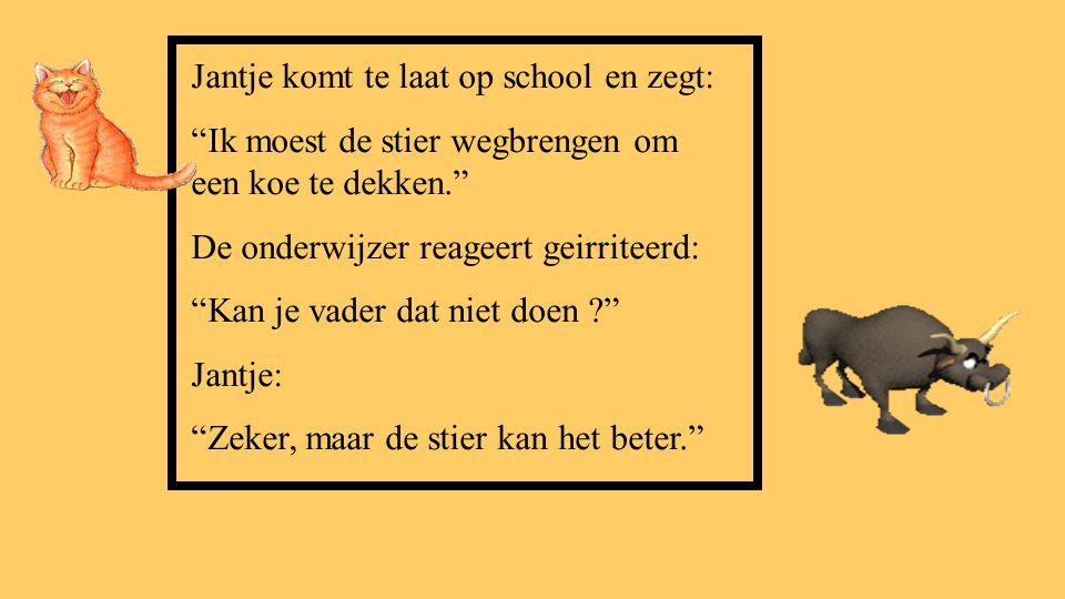 Jantje komt te laat op school en zegt: