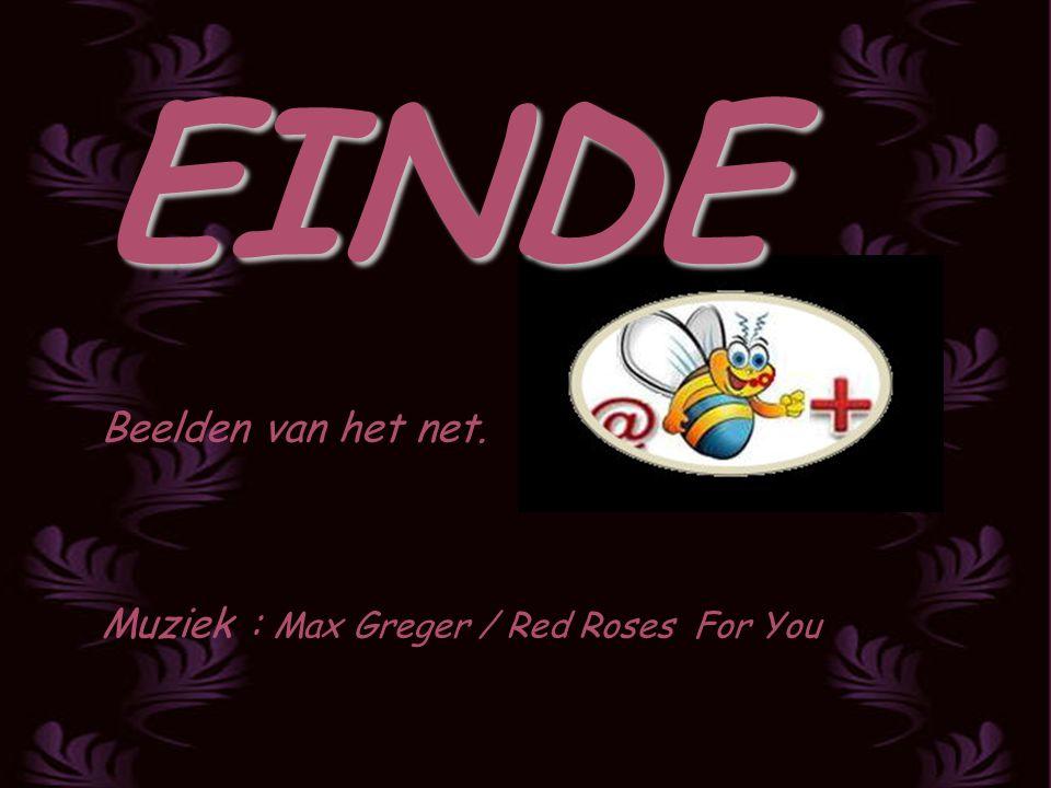 EINDE Beelden van het net. Muziek : Max Greger / Red Roses For You