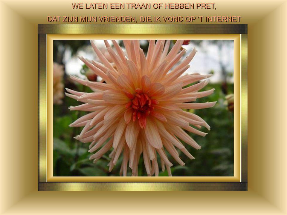 WE LATEN EEN TRAAN OF HEBBEN PRET,
