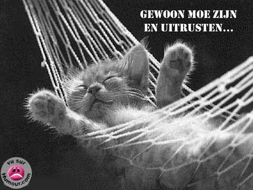 Gewoon moe zijn en uitrusten…