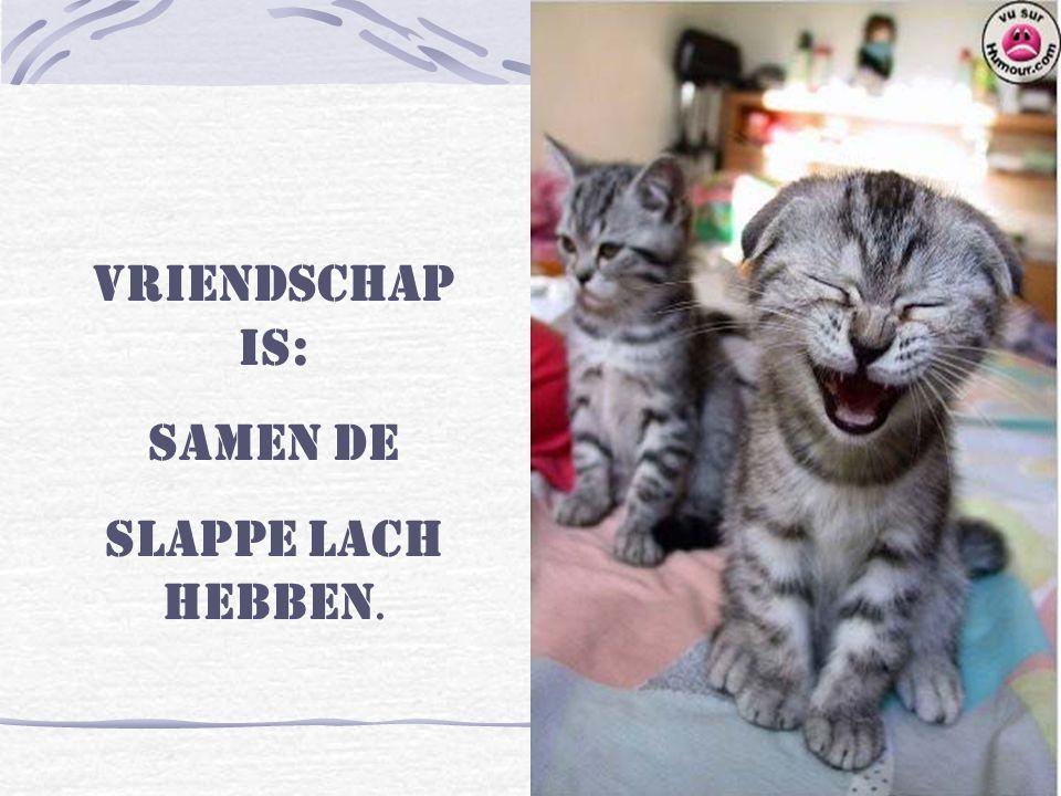 Vriendschap is: Samen de slappe lach hebben.