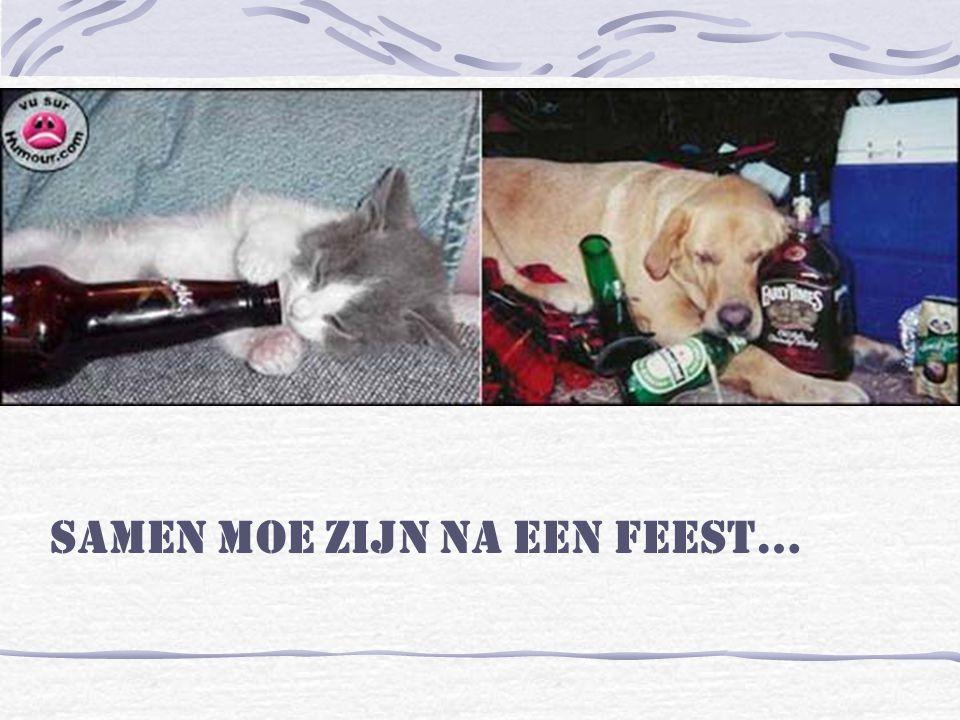 Samen moe zijn na een feest…