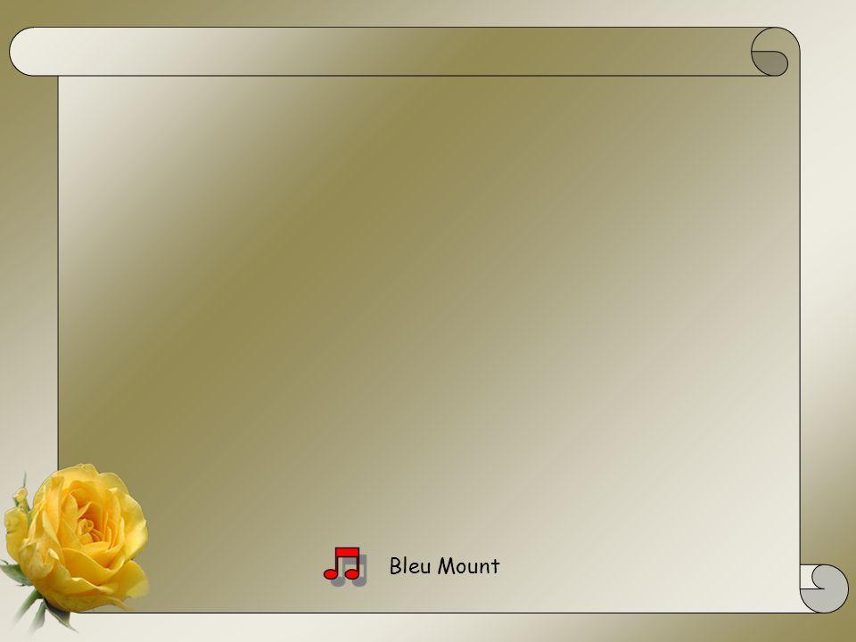 Bleu Mount