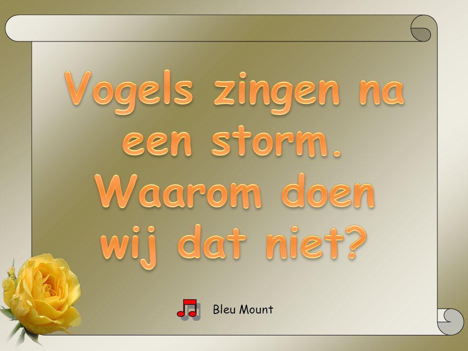 Vogels zingen na een storm. Waarom doen wij dat niet