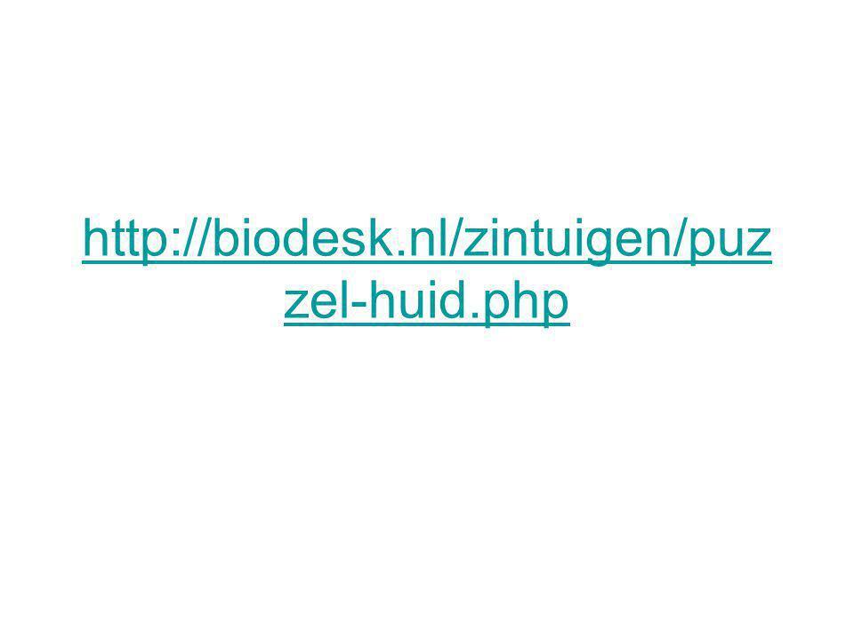 http://biodesk.nl/zintuigen/puzzel-huid.php