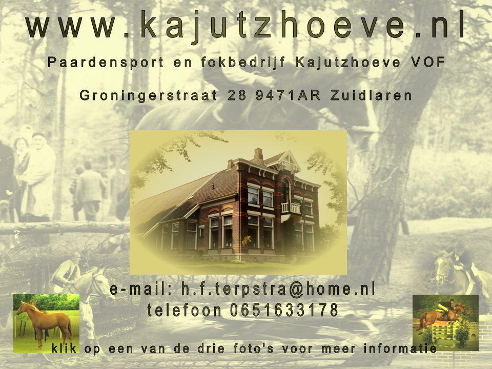 www.kajutzhoeve.nl Paardensport en fokbedrijf Kajutzhoeve VOF