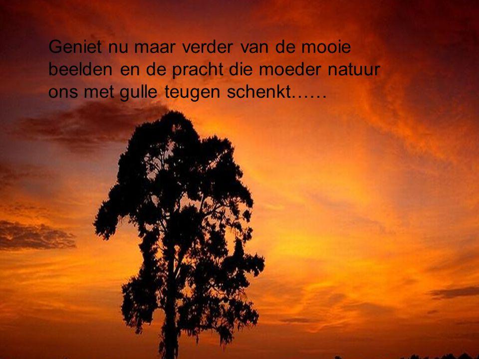 Geniet nu maar verder van de mooie beelden en de pracht die moeder natuur ons met gulle teugen schenkt……