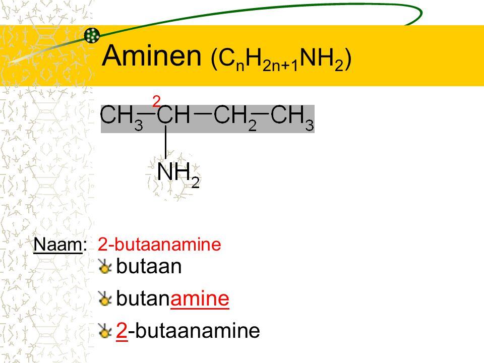 Aminen (CnH2n+1NH2) butaan butanamine 2-butaanamine Naam: