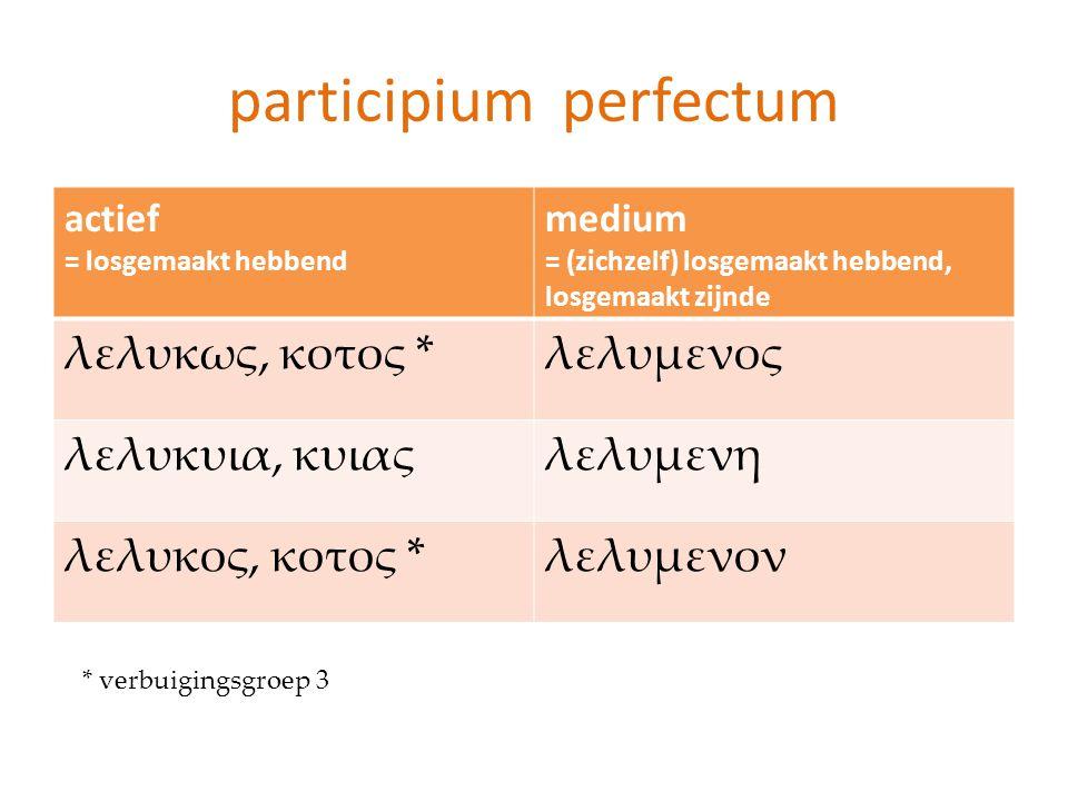participium perfectum
