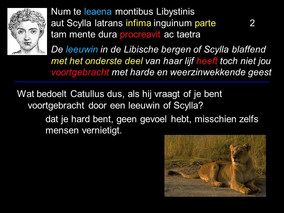 Num te leaena montibus Libystinis aut Scylla latrans infima inguinum parte 2 tam mente dura procreavit ac taetra De leeuwin in de Libische bergen of Scylla blaffend met het onderste deel van haar lijf heeft toch niet jou voortgebracht met harde en weerzinwekkende geest