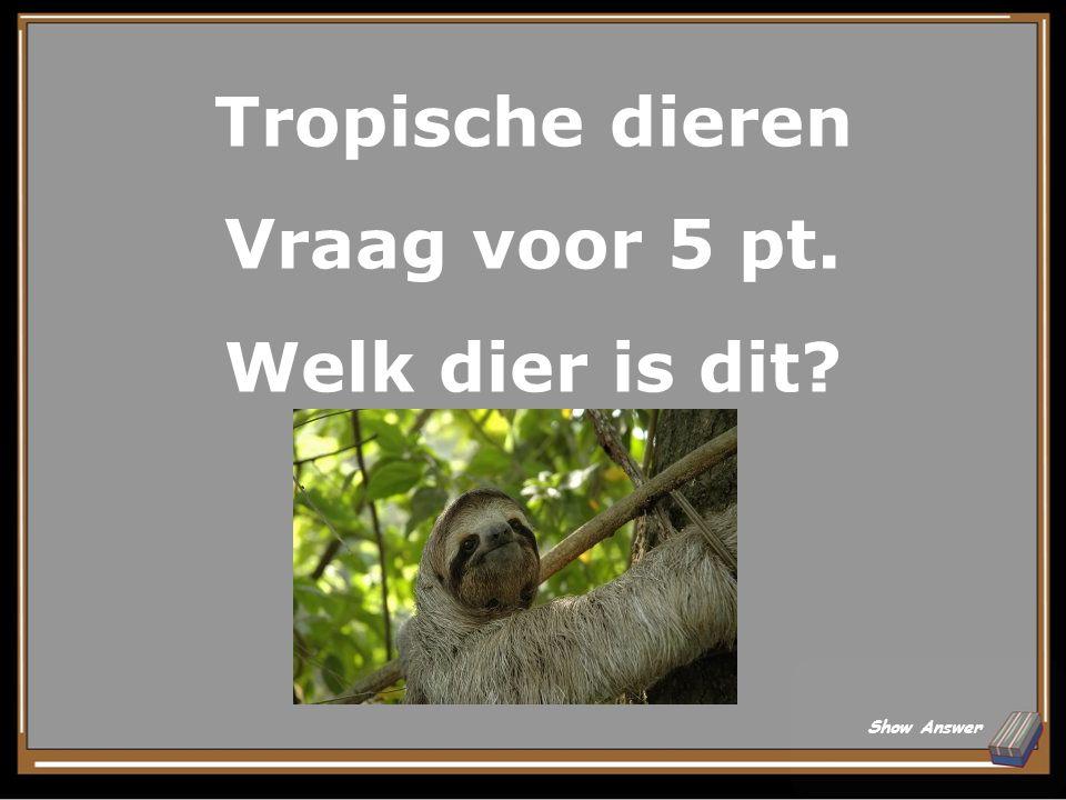 Tropische dieren Vraag voor 5 pt. Welk dier is dit