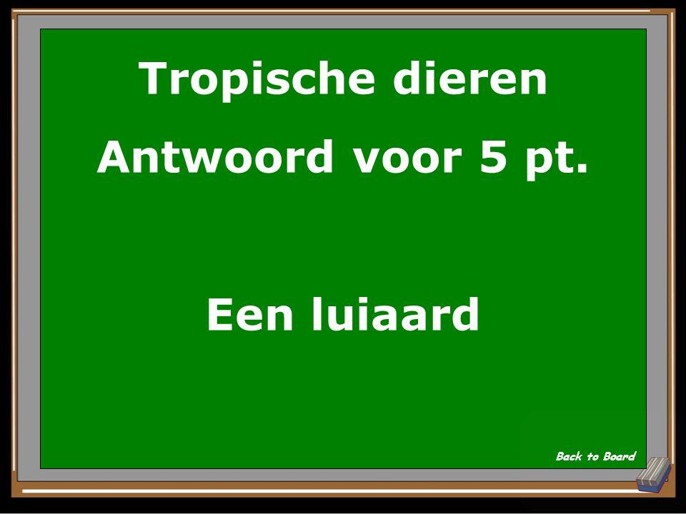 Tropische dieren Antwoord voor 5 pt. Een luiaard