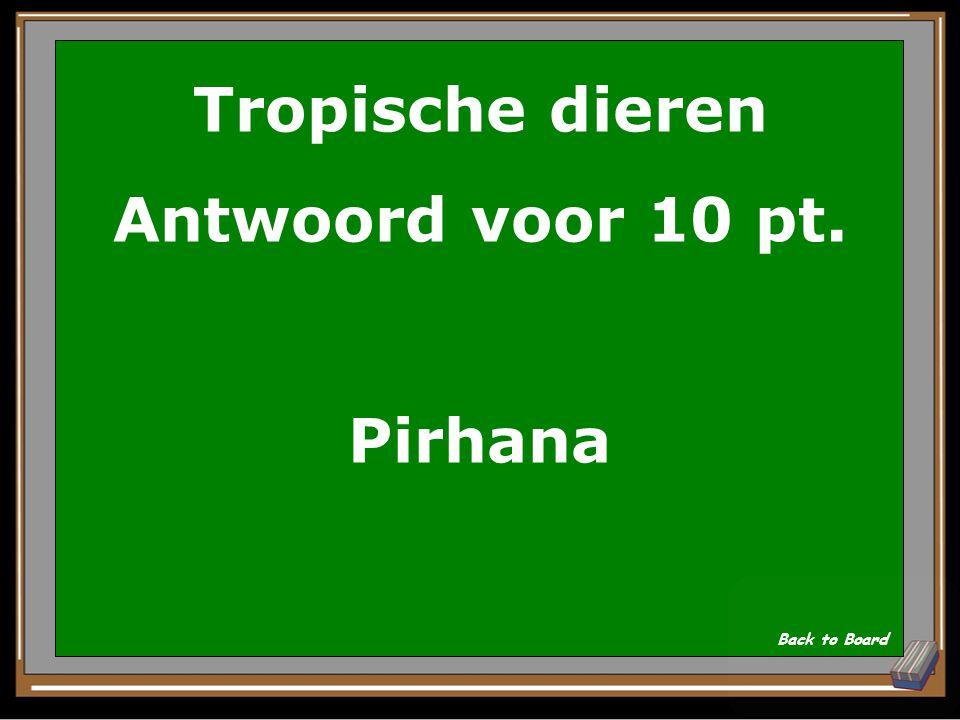Tropische dieren Antwoord voor 10 pt. Pirhana